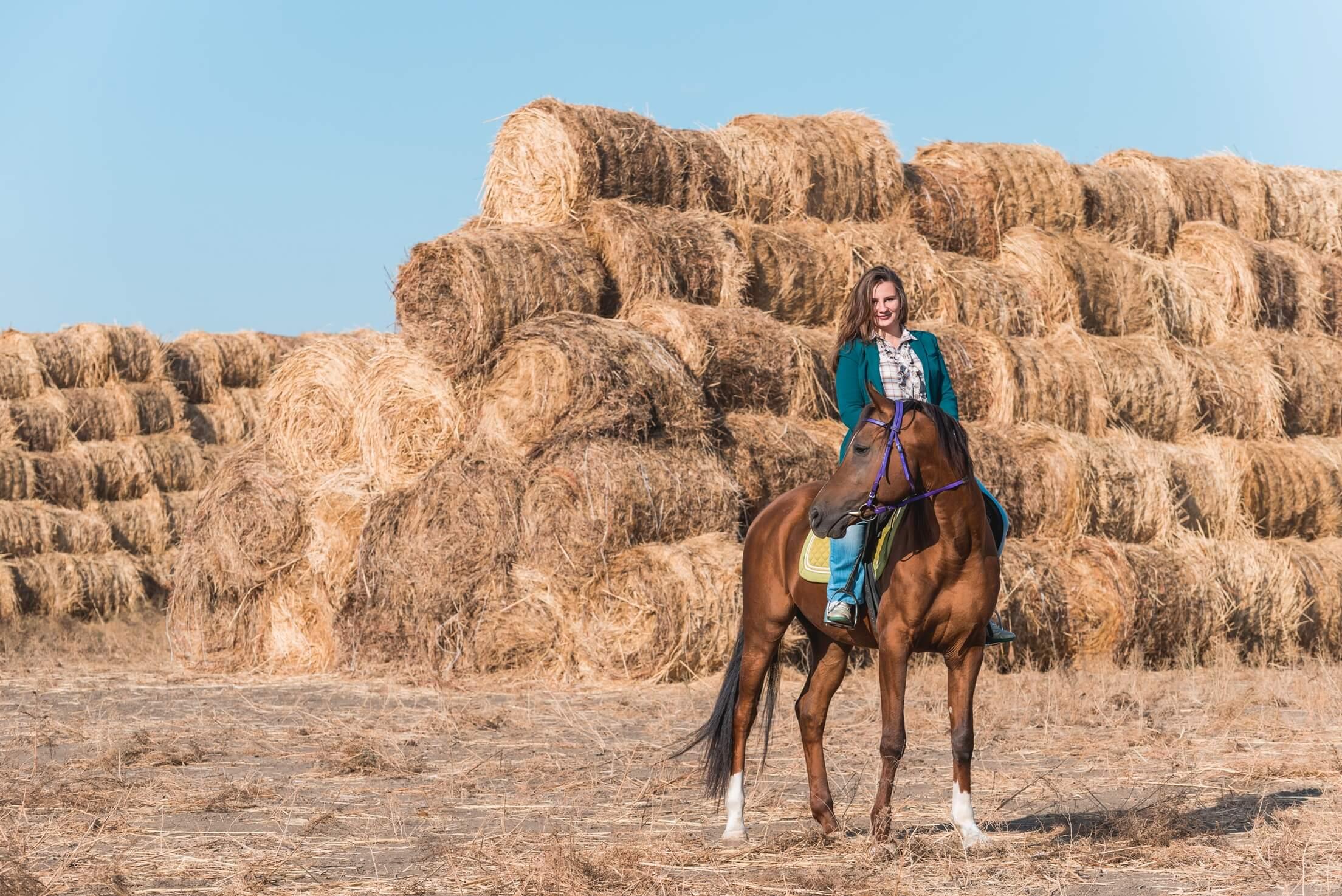 2016-11-24_horse_riding_instruction_1