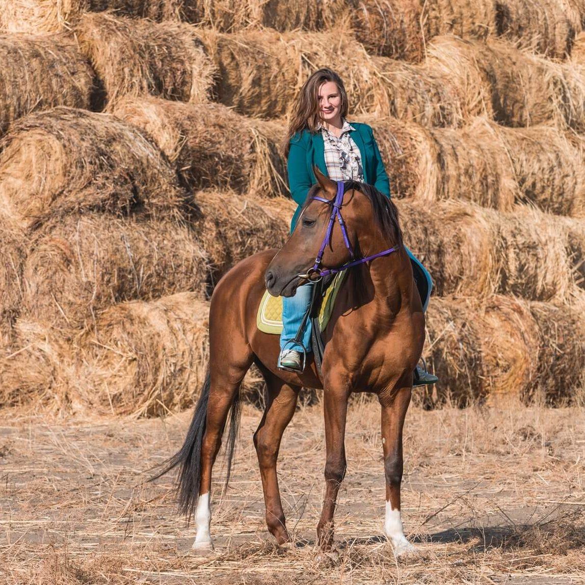 2016-11-24_horse_riding_instruction_prew